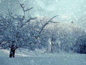 Thermoschutzhauben-Schnee